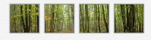 fineartprint-bilder
